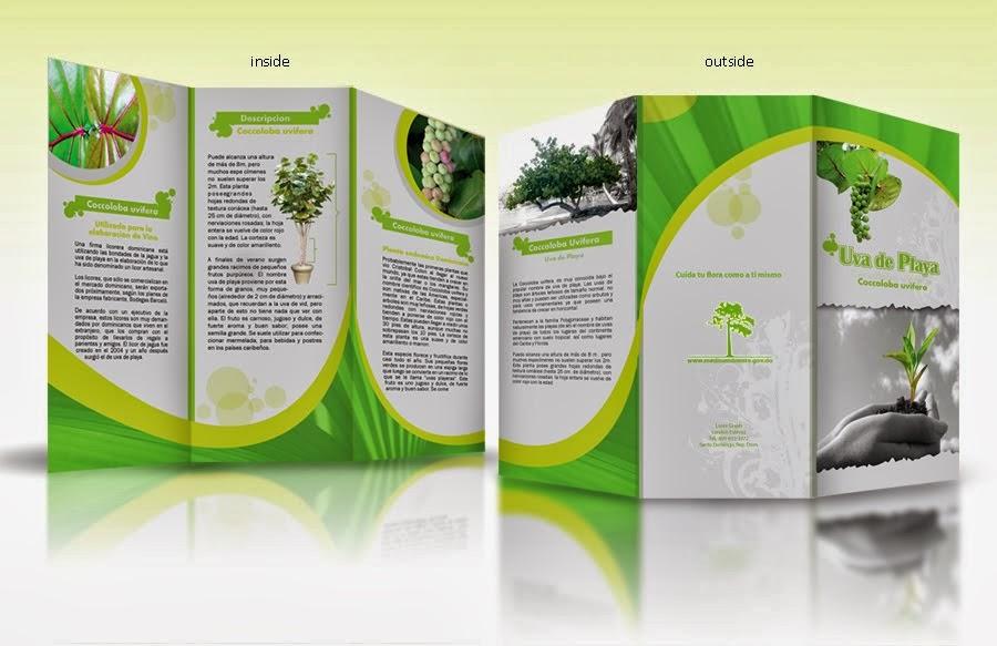 In brochure chất lượng